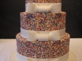 Bridal-Shower-Sprinkle-cake