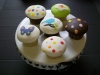 Fondant-covered cupcakes